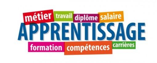 Embauche d'un apprenti dans les très petites entreprises : aide financière